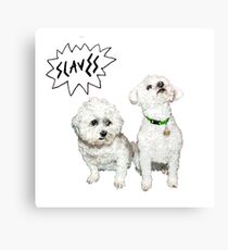 Slaves - Are you satisfied? Canvas Print