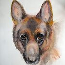My friends German Shepherd by Heidi Mooney-Hill