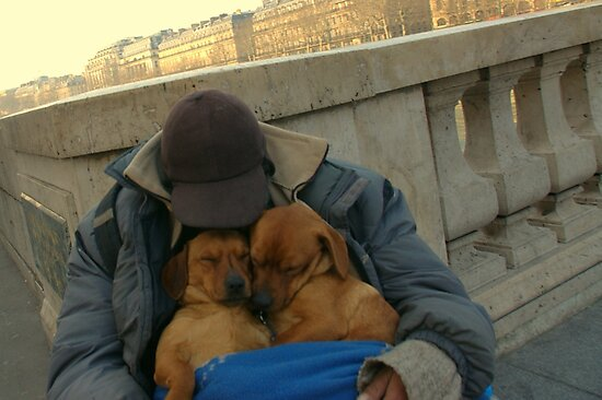 Paris - Just a little nap. by Jean-Luc Rollier