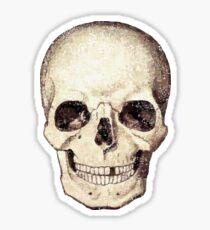 Smirking Skull with a Tooth Gap 01 Sticker