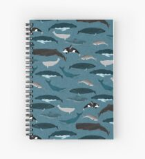 Whales and porpoises, sea life, marine animals ,nature, biology, marine life ,andrea lauren, print, kids, children, nursery, boys, boy art, whales, dolphins,  Spiral Notebook