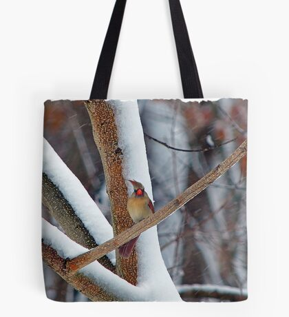 Oh great, and I just had my hair done! Tote Bag