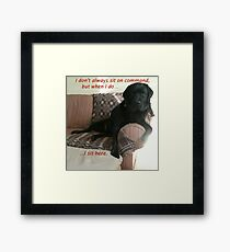 Black Dog Sits On Command on Couch Framed Print