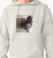 Black Dog Sits On Command on Couch Pullover Hoodie
