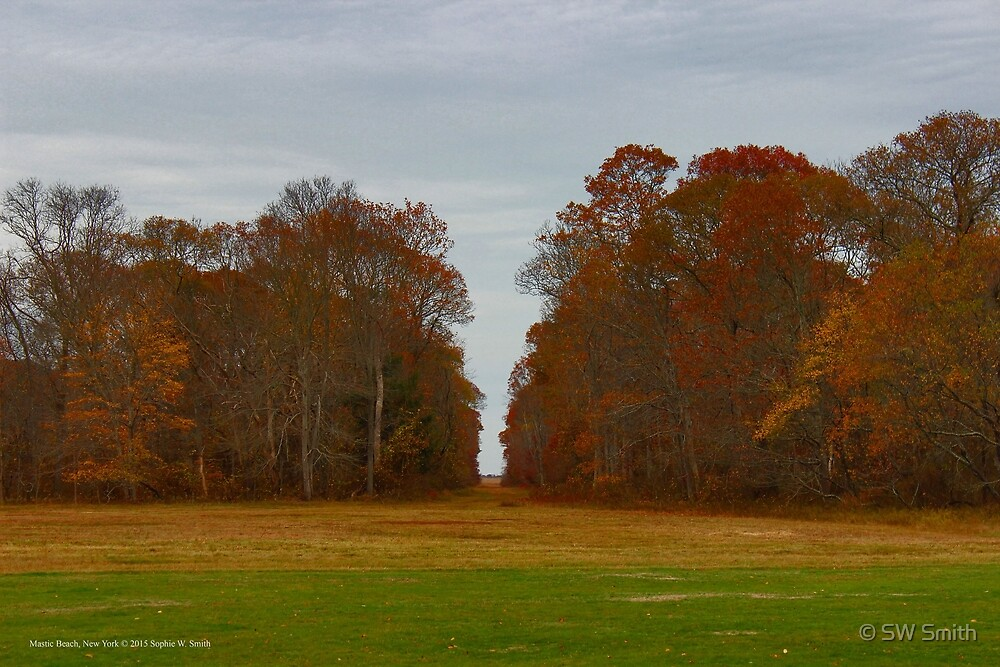 The View - William Floyd Estate | Mastic Beach, New York by © Sophie W. Smith