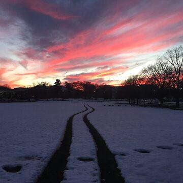 UMD Snowy Sunset by ewalsh19