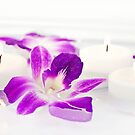Floating Orchids by Maria Dryfhout
