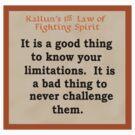 Kallun's 1st law- fighting spirit by Marc Grossberg
