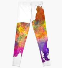 Border Collie in watercolor Leggings