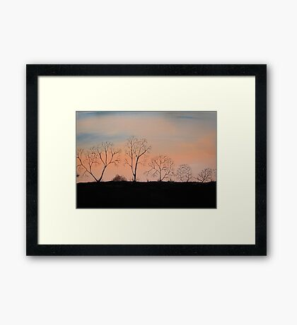 Trees in the Sunset Framed Print