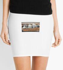 Hilarious Mini Skirt