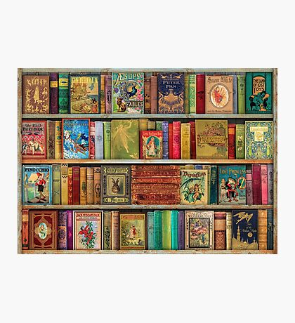 A Daydreamer's Book Shelf Photographic Print