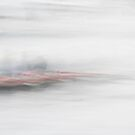 Rowing through the mist by LauraZim