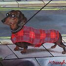 Dachshund going for a walk. by Hannah Dosanjh