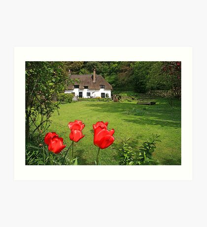 Cottage Garden Art Print