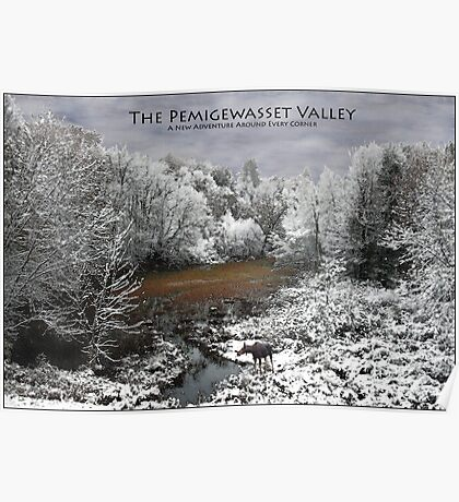 Pemigewasset Valley Poster - Moose on Snowy Oxbow Poster