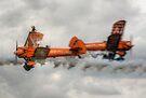 Breitling Stearman Wingwalkers by Nigel Bangert