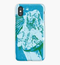 Warhol Frog iPhone Case/Skin