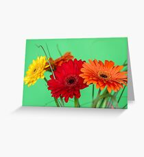 Gerberas in vase on a green background Greeting Card