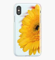 Gerberas macro iPhone Case/Skin