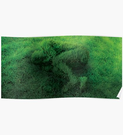 Sleeping On Grass Poster