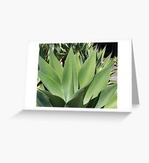 On Trend Greeting Card