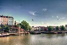 Gulls at the Docks by Nigel Bangert