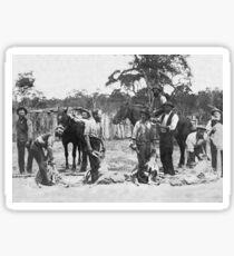 Shearing c1895 Sticker