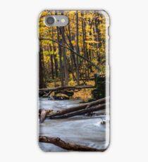 Fall stream iPhone Case/Skin