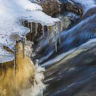 A Winter Creek by Veikko  Suikkanen