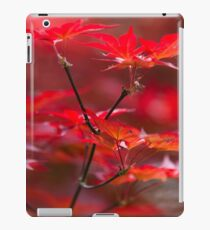 red leaves of maple iPad Case/Skin
