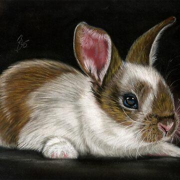 Bunny bunny by art-of-dreams