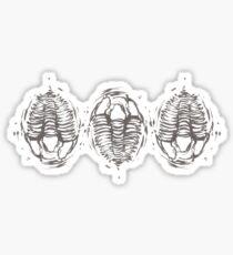 trilobite trio Sticker