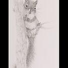 Squirrel - 20150802 Notebook by JulieWickham