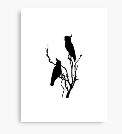 Wild Cockatoos Canvas Print