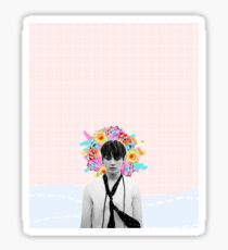 Jungkook - Nothing Like Us Sticker