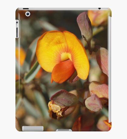 Gastrolobium velutinum iPad Case/Skin