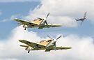 Spitfire Attack by Nigel Bangert