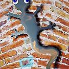 Gecko On The Wall by Juhan Rodrik