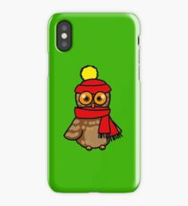 Cute winter owl bird iPhone Case/Skin