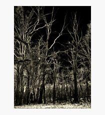 black noise Photographic Print