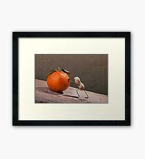 Simple Things - Sisyphos Framed Print