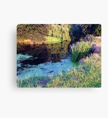 countryside view  Canvas Print