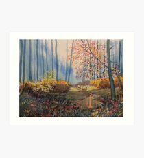 Sunlight and Sheep in Sledmere Woods Art Print