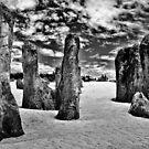 Pinnacles.  by Larrikin  Photography