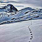 Footprints. by Larrikin  Photography