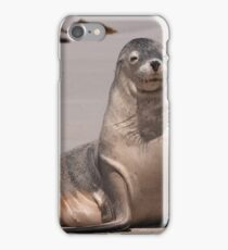 Sealions 6 iPhone Case/Skin