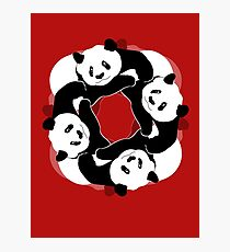 PANDA PLAY Photographic Print