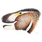 Fuzzy Tyrannosaurus by NearBird