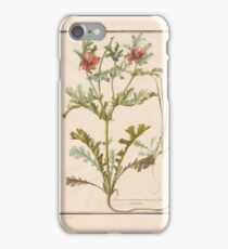 French School 18th century Plate iPhone Case/Skin